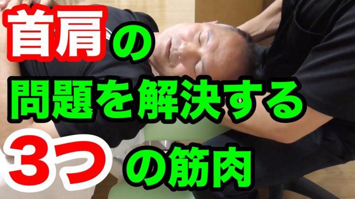 首肩の問題はこの3つの筋肉で解決する