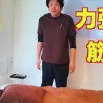 腰痛に関わる筋肉【神戸 腰痛】整体 整体院 マッサージ お尻