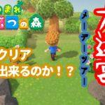 【あつまれどうぶつの森】脳みそ筋肉が挑む無人島の大迷宮メーデーツアー島!【あつ森】#12