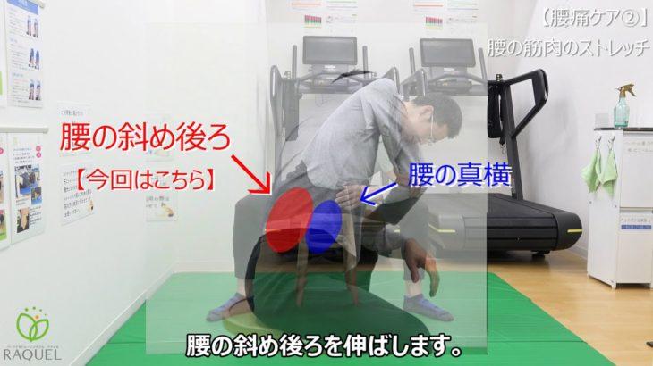 【2/3腰痛ケア】硬くなった腰の筋肉のストレッチ ~テレワークや家事による腰痛の悩みを楽にする方法~