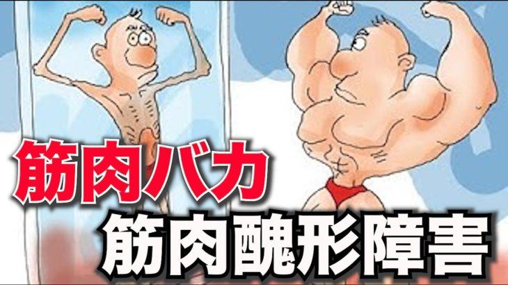【筋肉バカ】小島瑠璃子さんは正論。筋トレ好きは、精神障害も多い。筋肉醜形障害MDDはステロイド予備軍【ボディビル】