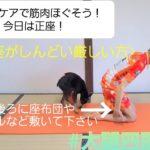 【簡単セルフケアで筋肉ほぐそう!】大腿四頭筋  簡単ストレッチ!