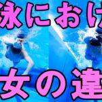 【水泳】男女の違い【クロール】筋肉や脂肪、柔軟性の影響は?