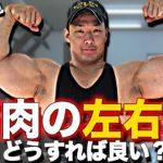 【筋肉】初心者のうちから左右差は直したほうが良い!?筋肉のアンバランスについて解説します!