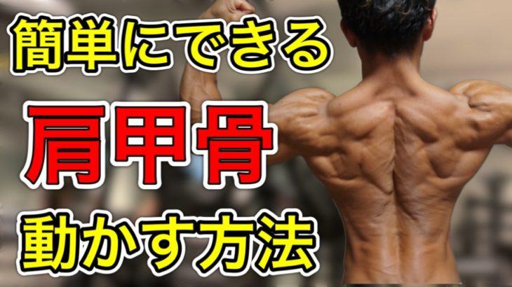 背中の筋肉に効く肩甲骨の動かす練習方法!