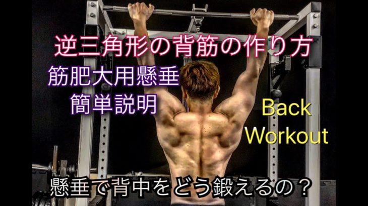 懸垂で背中の筋肉を大きく鍛えるには?