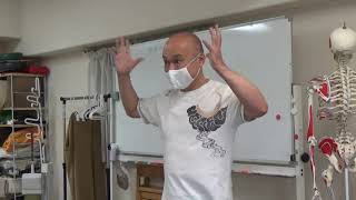 中臀筋の働き & 筋肉の働きを視覚化できる指導者について(小川隆之)/オープンパス・メソッド®/ボディワーク