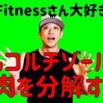 Sho Fitnessさん大好きです!でもコルチゾールは筋肉を分解する!