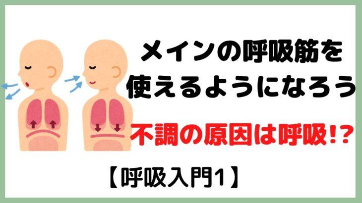 呼吸するために必要な筋肉をちゃんと動かせてる?【呼吸入門1】