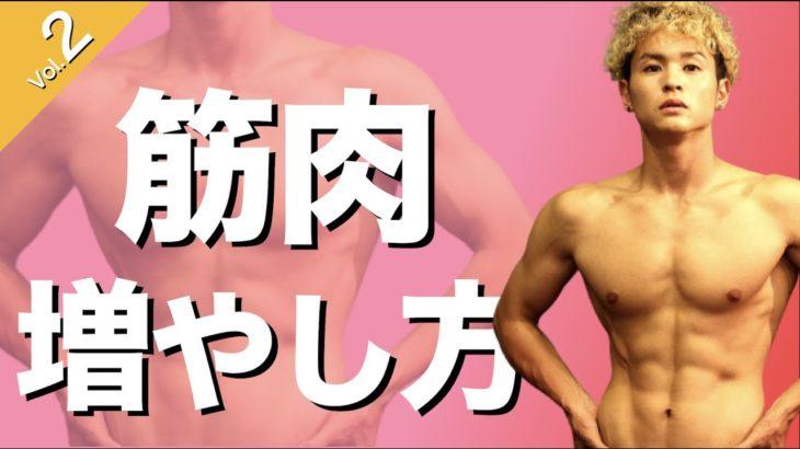 【筋肉つきづらい人必見】正しい筋肉の付け方・増やし方!増えづらい意外な落とし穴とは!?【アナボリック・カタボリック】