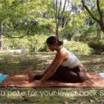 【yoga】腰痛改善&お尻の筋肉をほぐすヨガアーサナ3つ | おやすみ前のヨガ | 初心者さん向け |