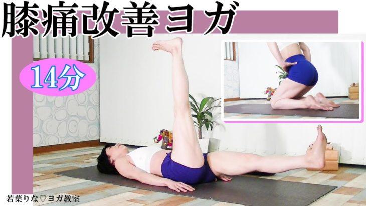 【ヨガ】膝痛に悩む方必見!膝を支える筋肉を柔軟にする!#172