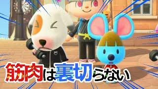 筋肉は裏切らない!お揃いジャージでトレーニング!【あつ森 あつまれどうぶつの森 トミ ペリーヌ ブロッコリー】Animal Crossing New Horizons Clips