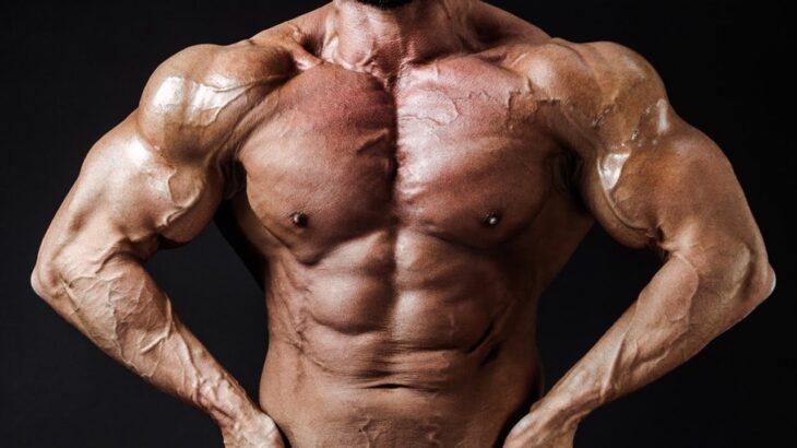 【5分でわかる!】この世の全ては筋肉で解決できることを教えてくれる動画【ハリ】