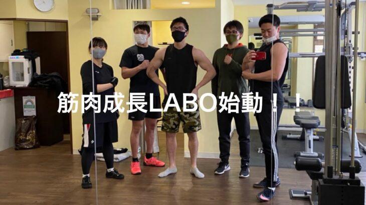筋肉成長LABO始動!!