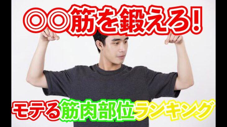 【モテ筋】○○筋を鍛えろ!!モテる筋肉部位ランキングTop5