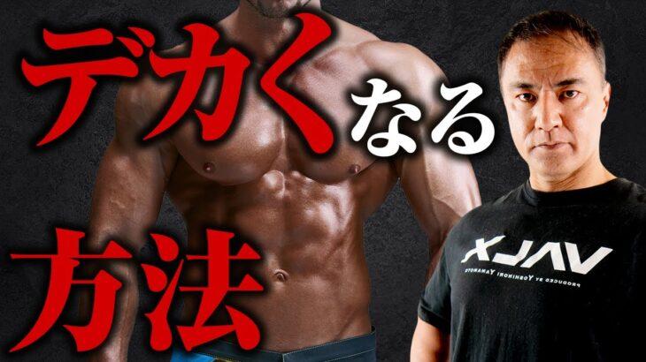 【筋トレ】最短で筋肉を大きくするために抑えておくべき重要なポイントとは【筋肥大】