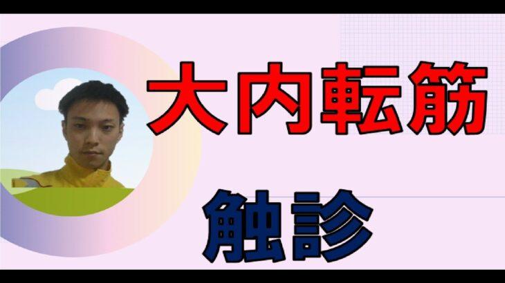 筋肉×触診 【大内転筋】 大殿筋の触診方法 理学療法士