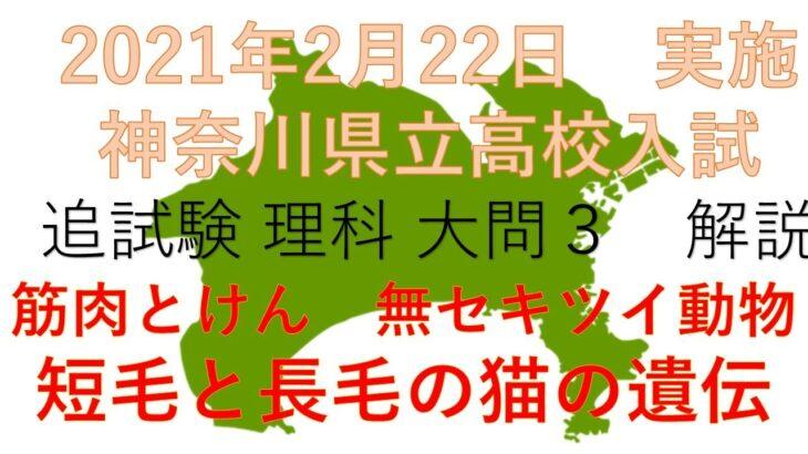 2021年 神奈川県立高校入試 追試験 大問3 筋肉 無セキツイ動物 遺伝