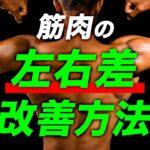 【筋トレ】筋肉の左右差を改善する方法【ビーレジェンド プロテイン】