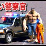 【GTA5】超デカい筋肉ゴリゴリ警察!超巨人すぎるデカすぎガチムチ警察官がパトロールする!キック力が世界一の超人!だれも逮捕に抵抗できない説!|警察官になる#460【ほぅ】