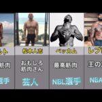 色々な筋肉