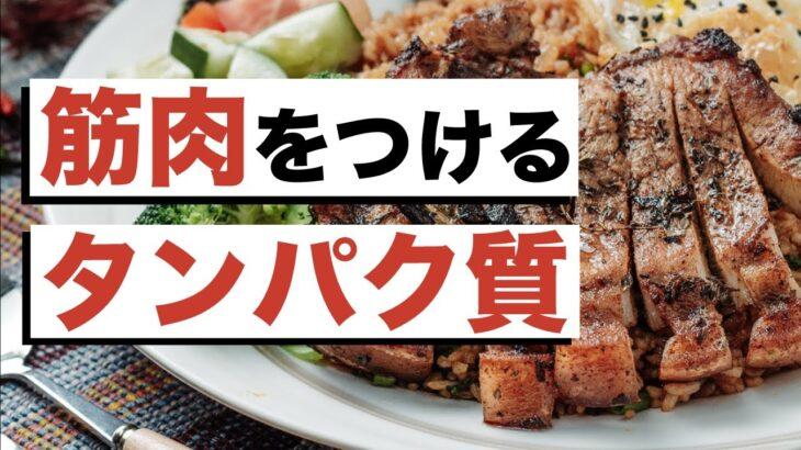 筋肉をつけるためにはしっかりお肉を食べましょう!