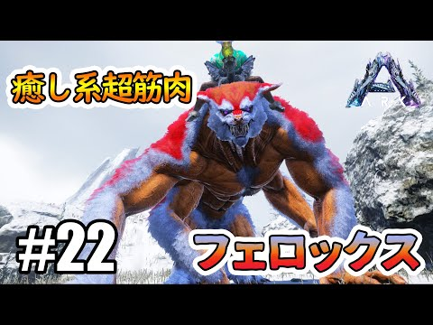 【出張ARK】内に潜む凶暴性!癒し系超筋肉「フェロックス」のイベカラーをテイムしたい! #22【Genesis】