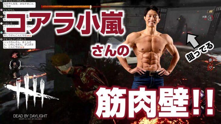 コアラ小嵐さんとDbD!コアラさんの筋肉壁は一味違う!【DbD】