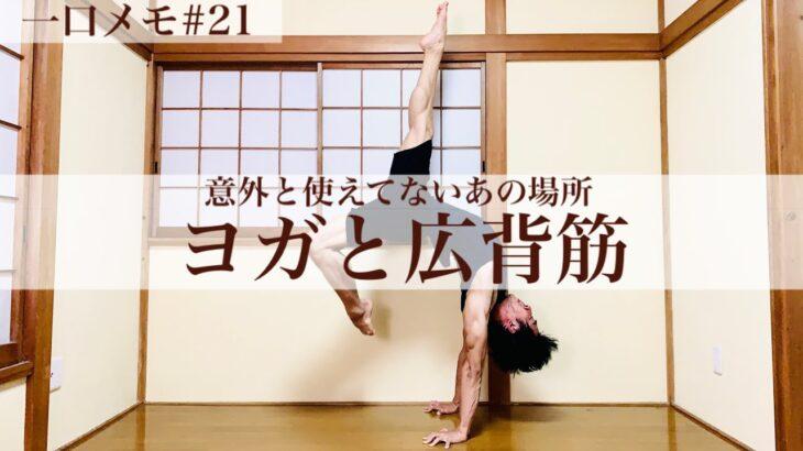 【ヨガと筋肉】使っているはずなのに鍛えられていない広背筋の謎