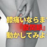 【WEEK43】膝痛いからって膝周りの筋肉を鍛えてるだけじゃもったいない!!