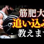 【筋肉痛不可避】トレーニング強度の具体的な上げ方を伝授!