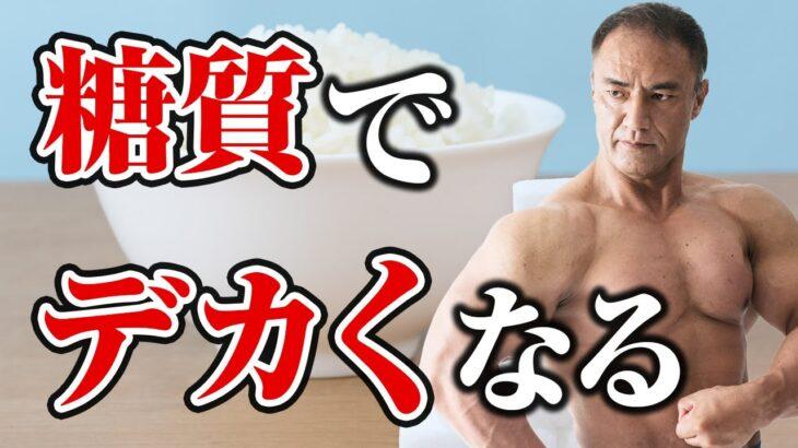 【筋トレ】筋肉を大きくするために絶対に欠かせない!糖質を正しく摂取して身体を作っていく秘訣【食事】