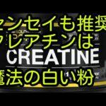 筋肉と脳に効く クレアチンはトレーニー必須のアンチエイジングサプリ