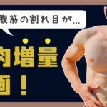 【#4】自重トレだけで筋肉増量計画!【ついに腹の割れ目が】